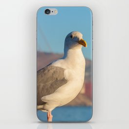 Gull with Golden Gate II iPhone Skin