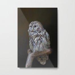 Lovely cute owl Metal Print