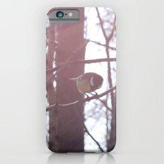 tit Slim Case iPhone 6s