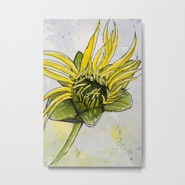 Budding Cup Plant Flower Metal Print
