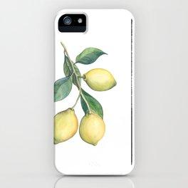 Lemon Dreams iPhone Case