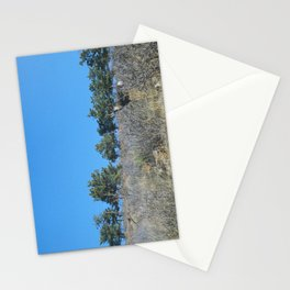 lyons & deer Stationery Cards