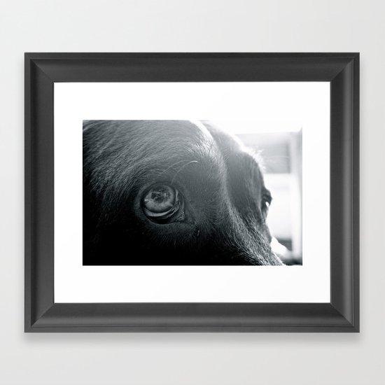 ojos Framed Art Print