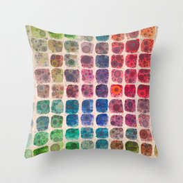 Paintbox Dreams Throw Pillow