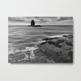 Black Nab Metal Print