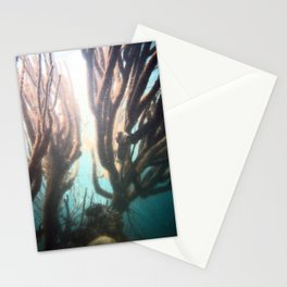 Deep Blue Reef Stationery Cards