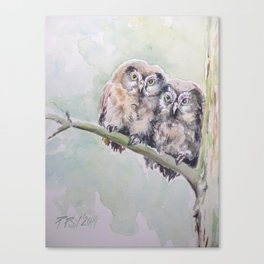 TWO CUTE OWLS Wildlife birds in the forest Watercolor painting Canvas Print