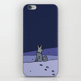 Three Dog Night - Winter iPhone Skin