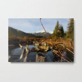 Vermilion Lakes Early Morning - Banff Metal Print