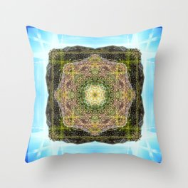 Sonoma Coast State Beach: Duncan's Point Throw Pillow