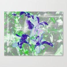 FlowerPower Fantasy 5-B Canvas Print