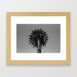 CALI PALM Framed Art Print
