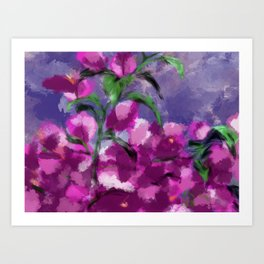 Bougainville Flowers  Art Print