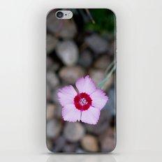 Purple Flower 2 iPhone Skin