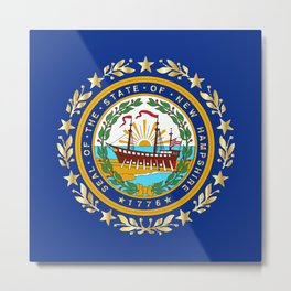 New Hampshire State Flag Metal Print