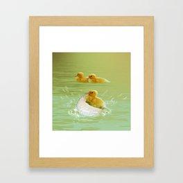 Küken Framed Art Print