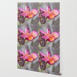Siem Reap Flora Wallpaper