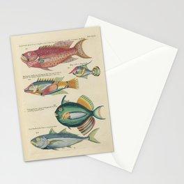 Vintage Fish Illustration V Stationery Cards