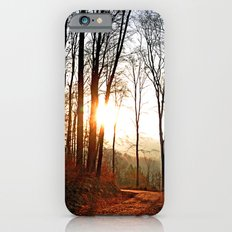 Sunset in the forest Slim Case iPhone 6