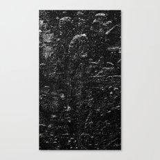 EmBOSS Canvas Print