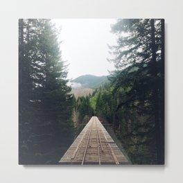 Vance Creek Bridge I Metal Print