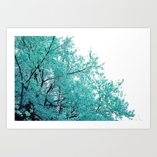 Turquoise Cherry Blossoms Art Print