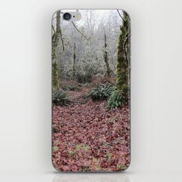 Enterance to the Woods iPhone Skin