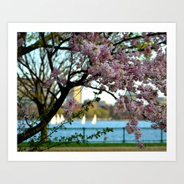 A Spring Day On The Charles River Boston MA Art Print