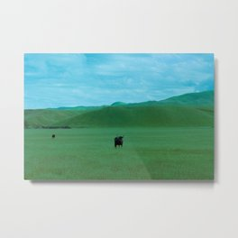 Keeping Distance Metal Print