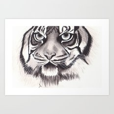 Felino Art Print