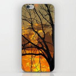Sunset Tree, California iPhone Skin