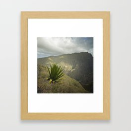 Agave King Framed Art Print