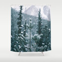 Winter IX Shower Curtain