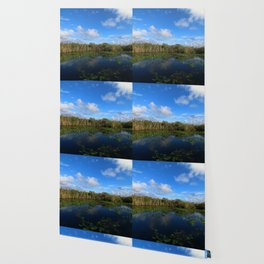 Blue Hour In The Everglades Wallpaper