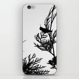 the thoughtful hummingbird iPhone Skin