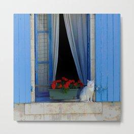Window cat Metal Print