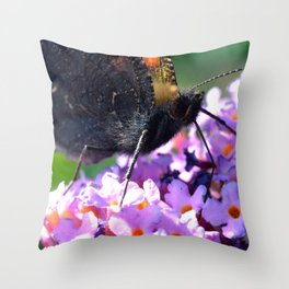 Comma butterfly on Buddleia Throw Pillow