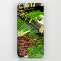 vegetables iPhone & iPod Skins featuring Fresh Vegetables by Chris' Landscape Images & Designs