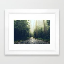 Redwood Forest Adventure - Nature Photography Framed Art Print