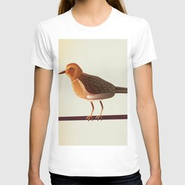Mountain Plover T-shirt