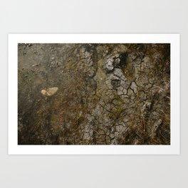 muddy puddle Art Print