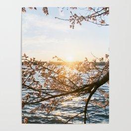 Sun Over the Horizon Poster