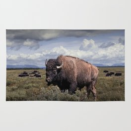American Buffalo or Bison in the Grand Teton National Park Rug