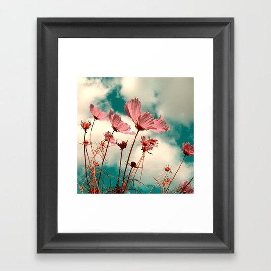 cosmos flowers II Framed Art Print
