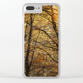Forest in Autumn time Clear iPhone Case