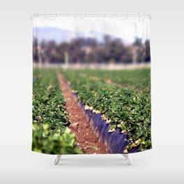 Strawberry Field Shower Curtain