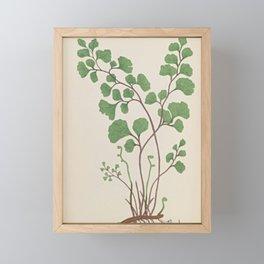 Maidenhair Fern Framed Mini Art Print