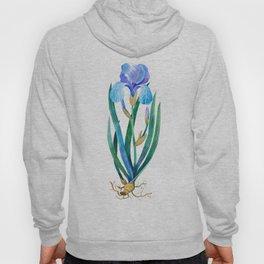 Light Blue Iris Hoody