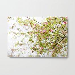 Spring Confetti Metal Print