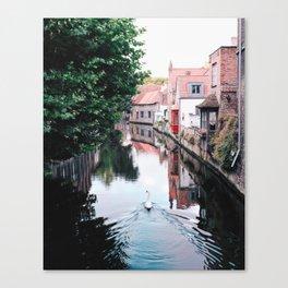 Swan in Belgium Canvas Print